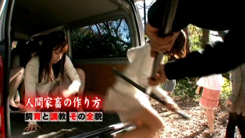 """【アダルト動画】""""人間家畜牧場 SUPER STAR 大沢美加"""" ほかのトップ画像"""